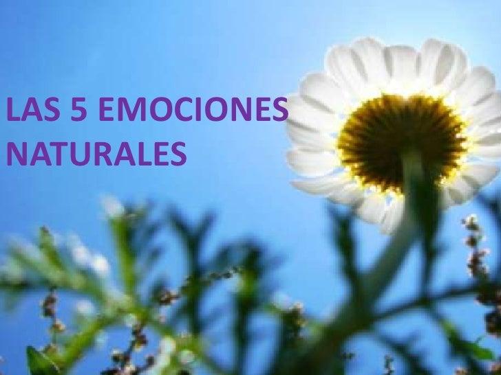 Las 5 emociones naturales
