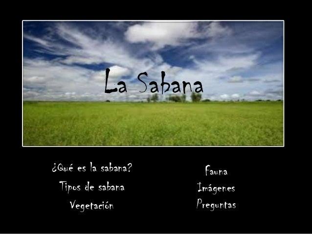 La Sabana¿Qué es la sabana?     Fauna Tipos de sabana     Imágenes    Vegetación       Preguntas