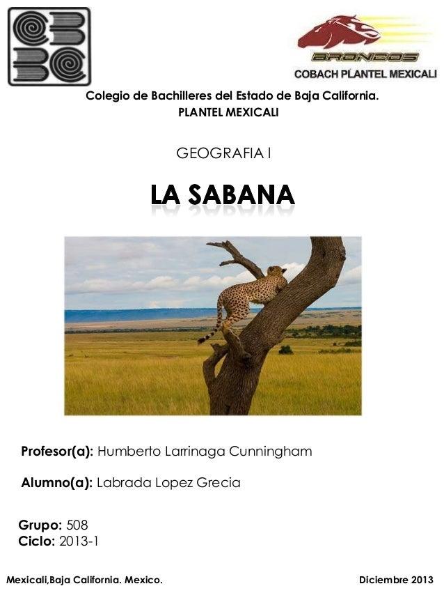 Colegio de Bachilleres del Estado de Baja California. PLANTEL MEXICALI  GEOGRAFIA l  Profesor(a): Humberto Larrinaga Cunni...