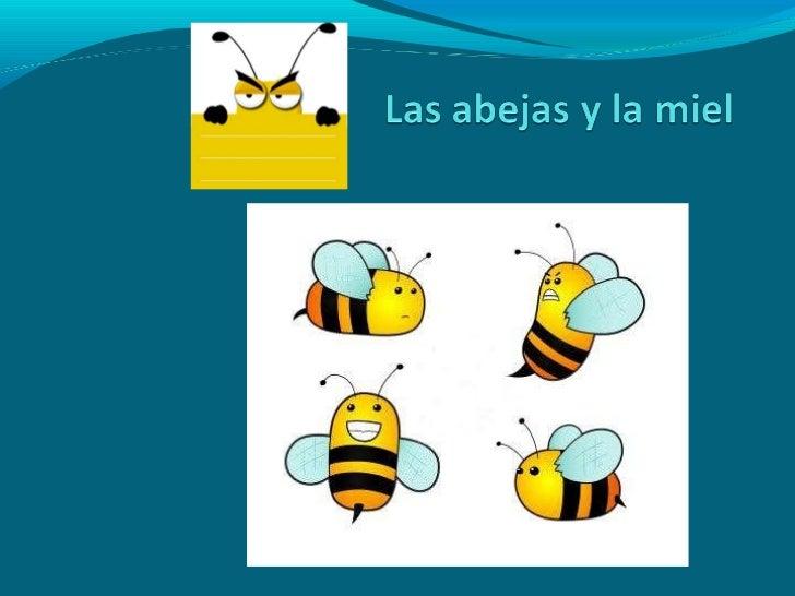 Las abejas y la miel, Pablo
