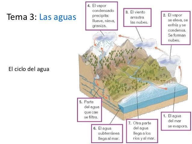 Tema 3: Las aguasEl ciclo del agua