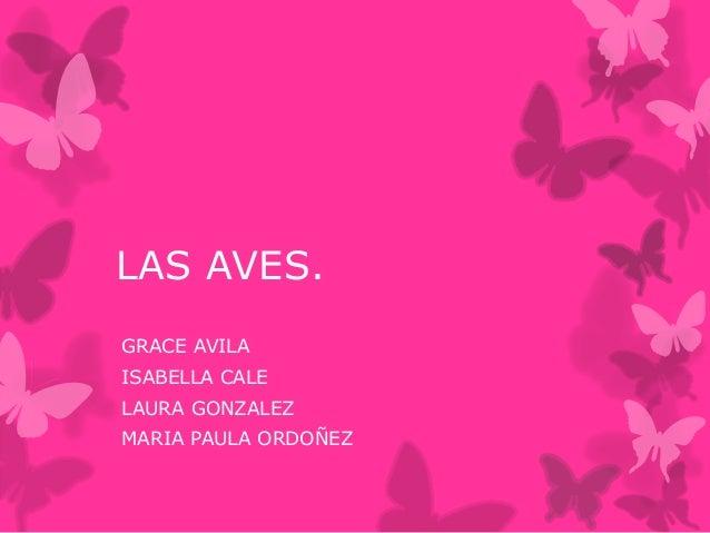 LAS AVES. GRACE AVILA ISABELLA CALE LAURA GONZALEZ MARIA PAULA ORDOÑEZ
