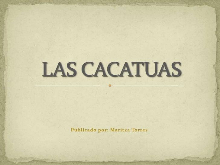 Publicado por: Maritza Torres<br />LAS CACATUAS<br />