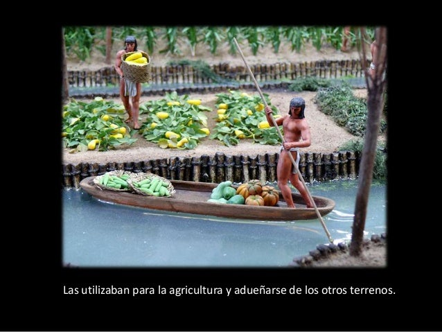 chinampas aztecas - photo #4