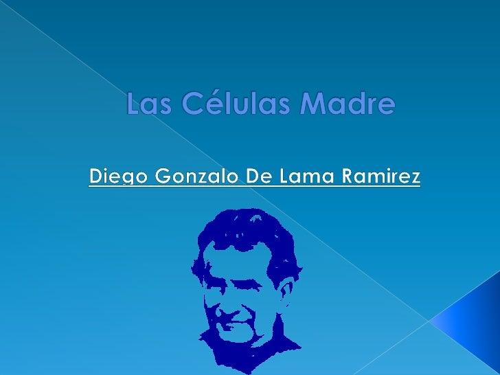 Las Células Madre<br />Diego Gonzalo De Lama Ramirez<br />