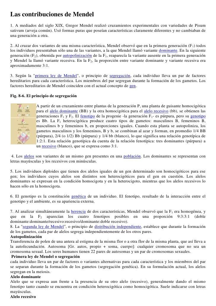 Las contribuciones de Mendel<br />1. A mediados del siglo XIX, Gregor Mendel realizó cruzamientos experimentales con varie...