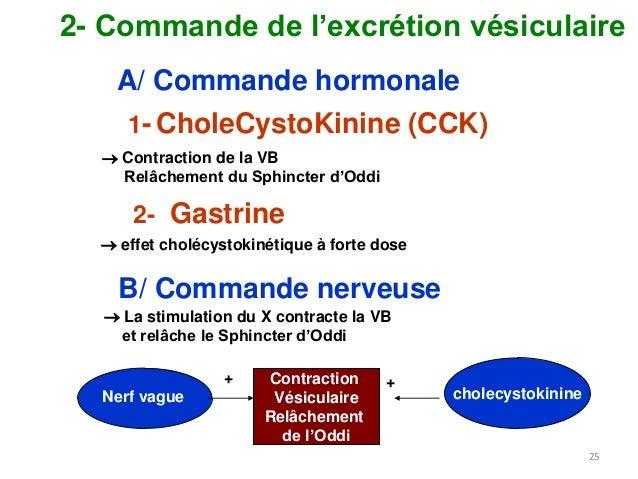 La sécr... Gamma Glutamyl Transferase