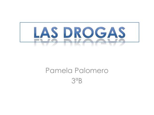 Pamela Palomero Las drogas