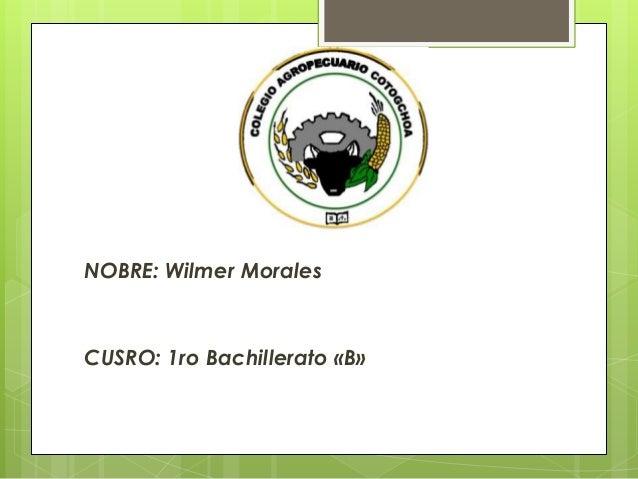 NOBRE: Wilmer Morales  CUSRO: 1ro Bachillerato «B»