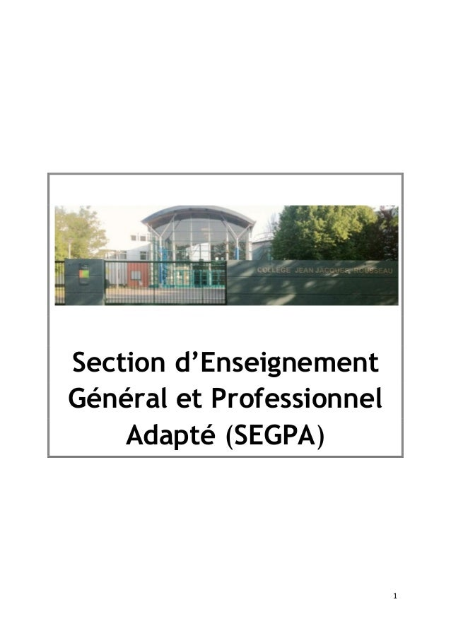 1 Section d'Enseignement Général et Professionnel Adapté (SEGPA)