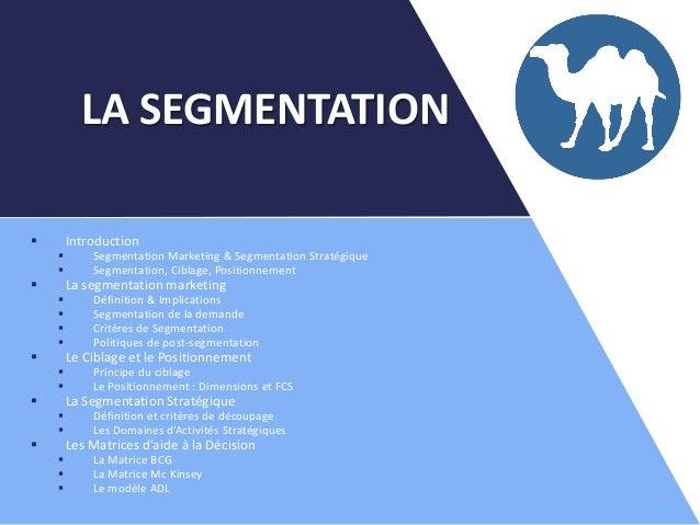  Introduction  Segmentation Marketing & Segmentation Stratégique  Segmentation, Ciblage, Positionnement  La segmentati...
