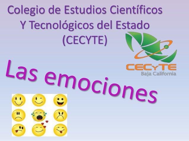 Colegio de Estudios Científicos Y Tecnológicos del Estado (CECYTE)
