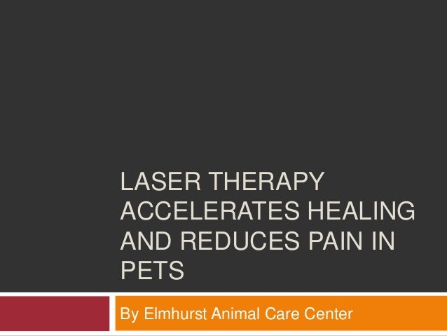 """pets and healing therapy """"pets provide a nonjudgmental sounding board,"""" says mccoy, who wrote a book about her therapy cats called purr therapy: what timmy and marina taught me about love, life and loss she says adopting a pet, or even just spending time around animals, can be used as one way to help heal after."""