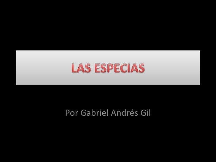 Por Gabriel Andrés Gil
