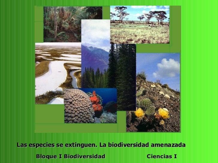 Las especies se extinguen. La biodiversidad amenazada       Bloque I Biodiversidad            Ciencias I
