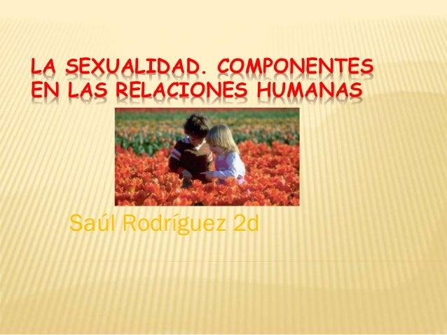 LA SEXUALIDAD. COMPONENTES EN LAS RELACIONES HUMANAS Saúl Rodríguez 2d