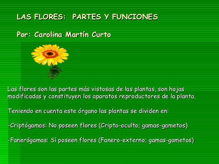 LAS FLORES:  PARTES Y FUNCIONES Por: Carolina Martín Curto Las flores son las partes más vistosas de las plantas, son hoja...