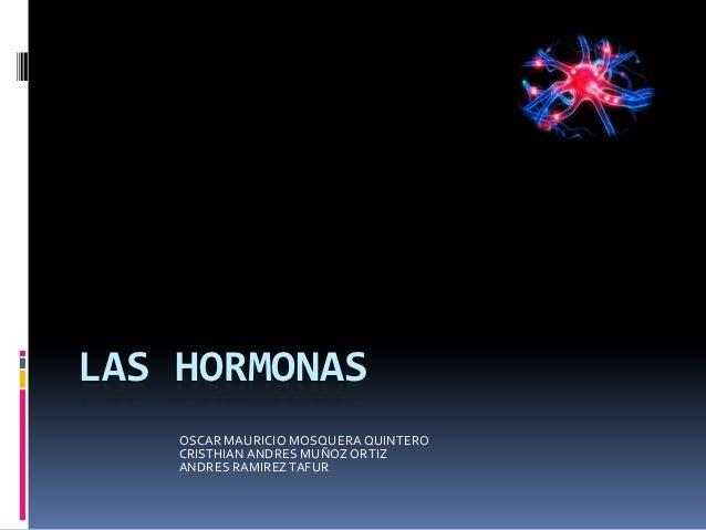 LAS HORMONAS    OSCAR MAURICIO MOSQUERA QUINTERO    CRISTHIAN ANDRES MUÑOZ ORTIZ    ANDRES RAMIREZ TAFUR