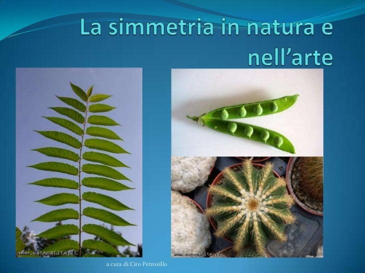 La simmetria in natura e arte