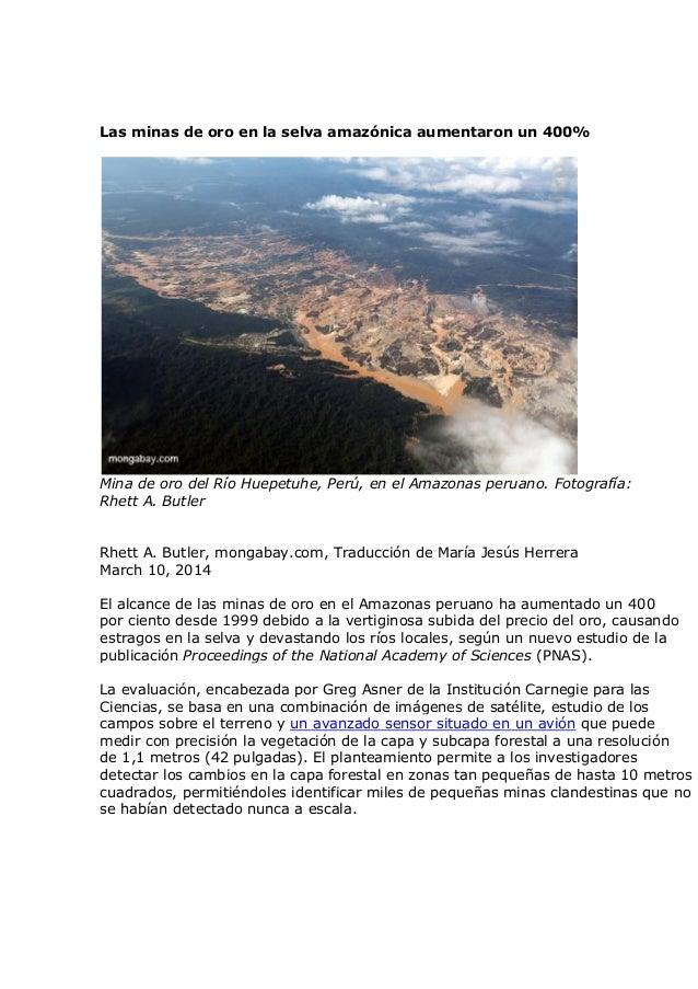Las minas de oro en la selva amazónica aumentaron un 400%