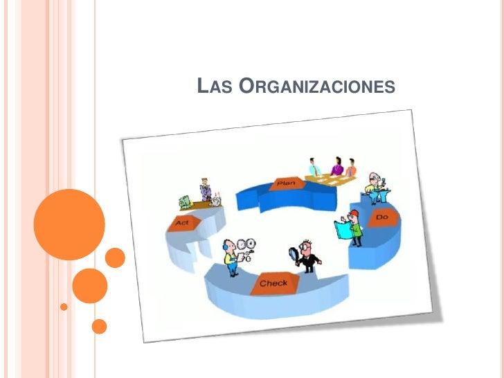 Las Organizaciones <br />