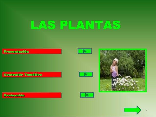 LAS PLANTAS Presentación Presentación  Contenido Temático Contenido Temático  Evaluación Evaluación  1
