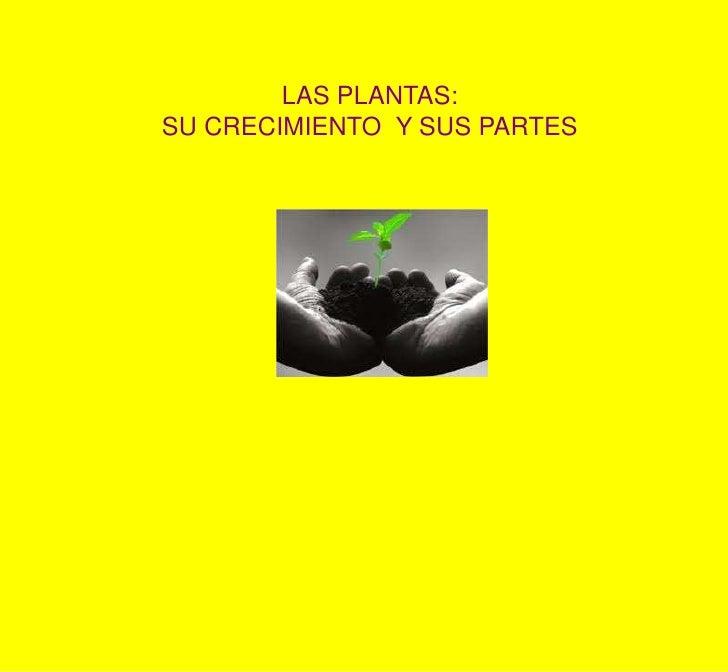 LAS PLANTAS: <br />SU CRECIMIENTO  Y SUS PARTES<br />