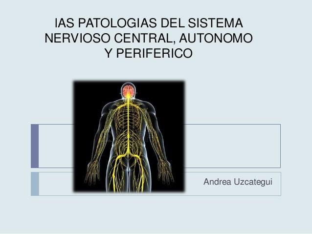 lAS PATOLOGIAS DEL SISTEMA NERVIOSO CENTRAL, AUTONOMO Y PERIFERICO Andrea Uzcategui