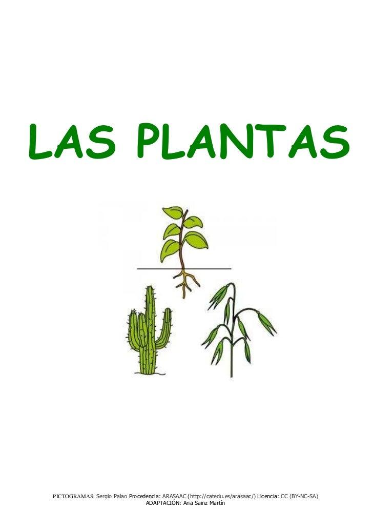 LAS PLANTASPICTOGRAMAS: Sergio Palao Procedencia: ARASAAC (http://catedu.es/arasaac/) Licencia: CC (BY-NC-SA)             ...