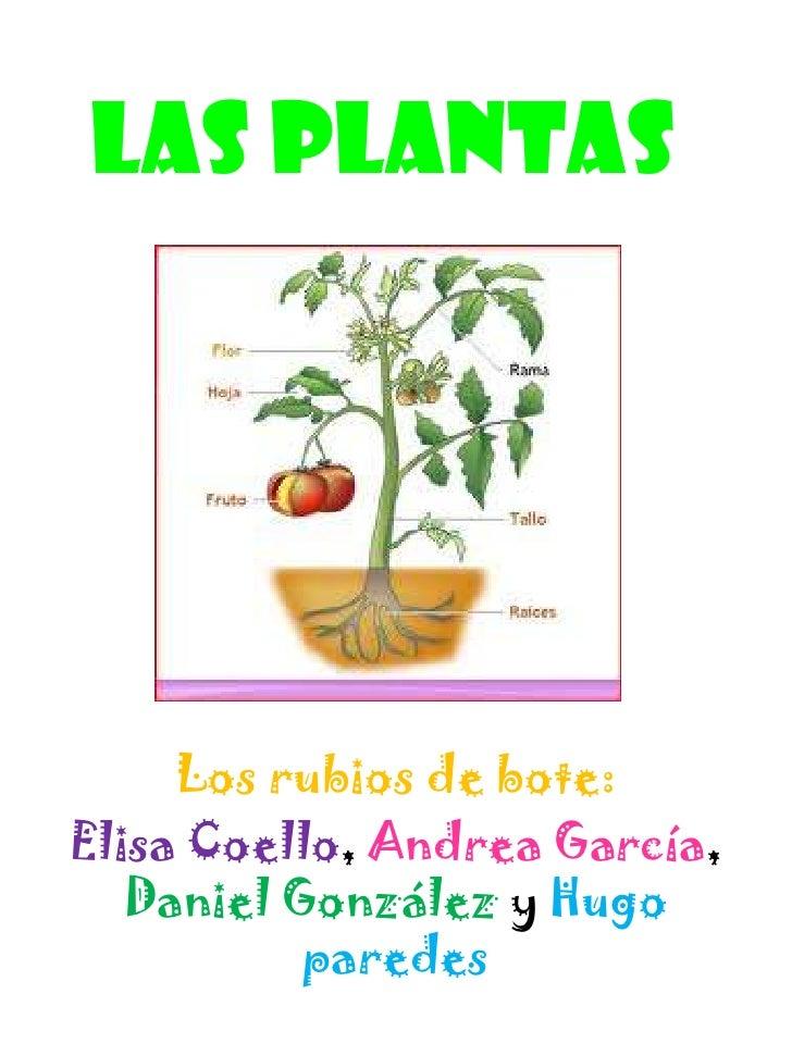 Las plantas     Los rubios de bote:Elisa Coello, Andrea García,   Daniel González y Hugo           paredes