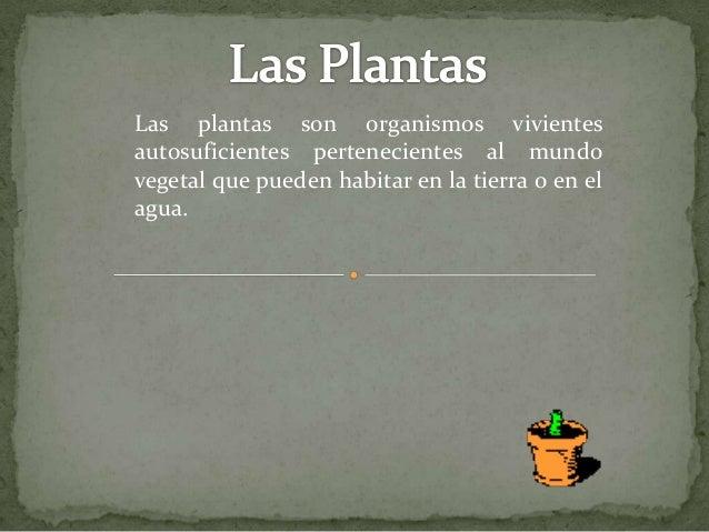 Las plantas son organismos vivientes autosuficientes pertenecientes al mundo vegetal que pueden habitar en la tierra o en ...