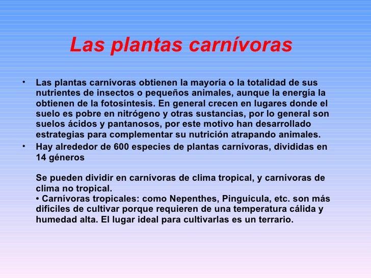 Las plantas carnívoras <ul><li>Las plantas carnívoras obtienen la mayoría o la totalidad de sus nutrientes de insectos o p...