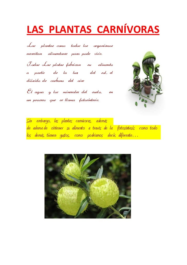 LAS PLANTAS CARNÍVORASLas plantas como todos los organismosnecesitan