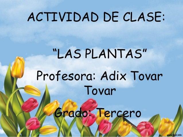 """ACTIVIDAD DE CLASE:   """"LAS PLANTAS"""" Profesora: Adix Tovar         Tovar   Grado: Tercero"""