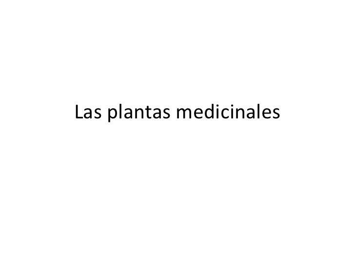 Las plantas medicinales