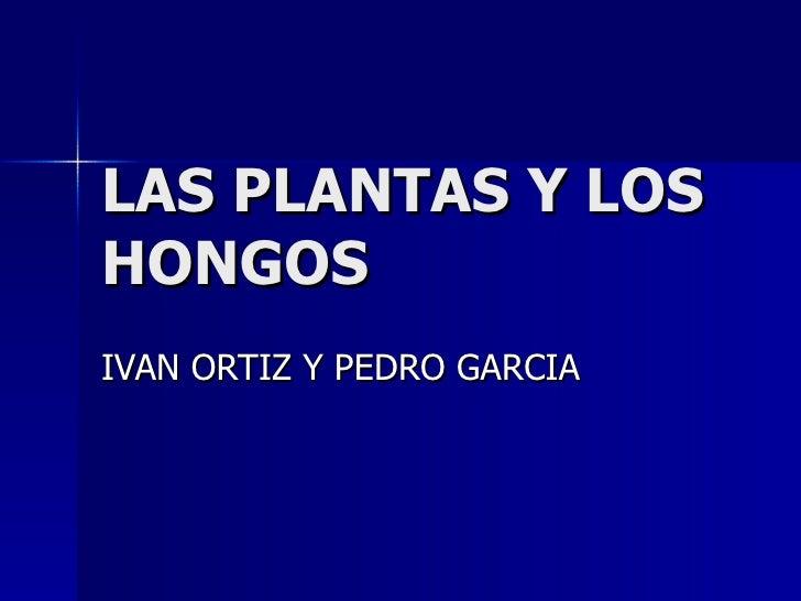 LAS PLANTAS Y LOS HONGOS IVAN ORTIZ Y PEDRO GARCIA