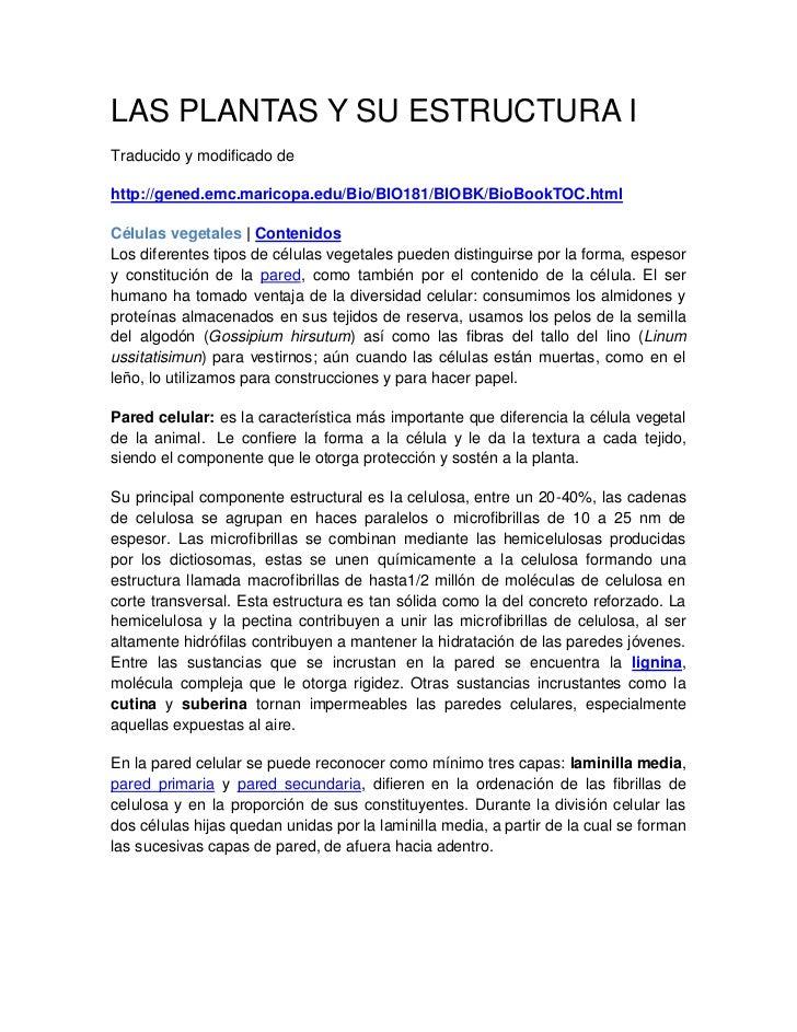 LAS PLANTAS Y SU ESTRUCTURA ITraducido y modificado dehttp://gened.emc.maricopa.edu/Bio/BIO181/BIOBK/BioBookTOC.htmlCélula...