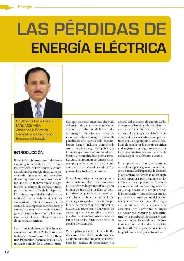 12 Energía LAS PÉRDIDAS DE ENERGÍA ELÉCTRICA INTRODUCCIÓN En el ámbito internacional, el robo de energía genera pérdidas m...