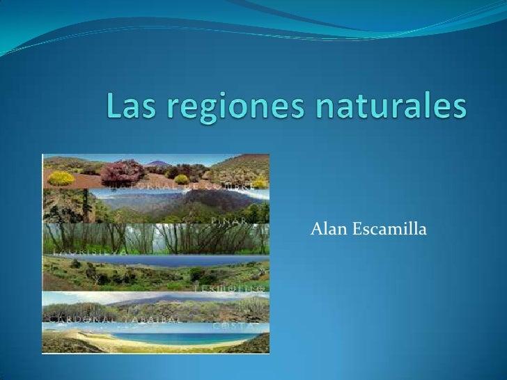 Las regiones naturales - Ambientadores naturales para la casa ...