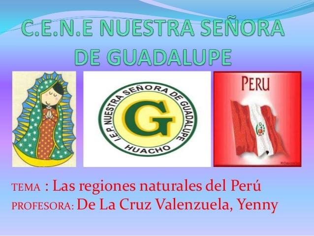 Las regiones naturales del per 1 - Ambientadores naturales para la casa ...