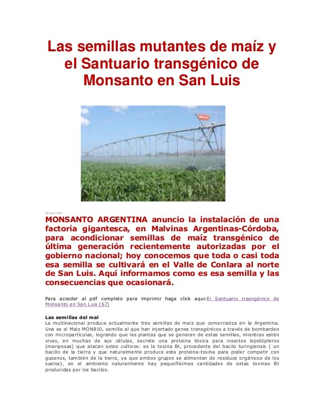 Las semillas mutantes de maíz yel Santuario transgénico deMonsanto en San Luis26 mayo, 2013MONSANTO ARGENTINA anuncio la i...