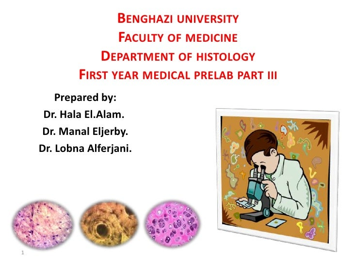 BENGHAZI UNIVERSITY                    FACULTY OF MEDICINE                 DEPARTMENT OF HISTOLOGY            FIRST YEAR M...