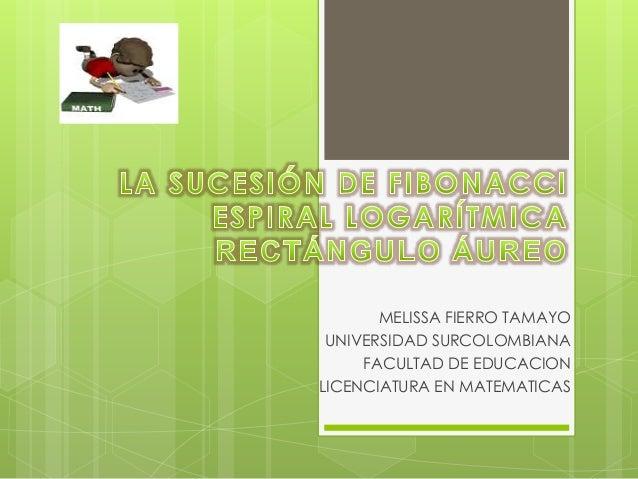 MELISSA FIERRO TAMAYO UNIVERSIDAD SURCOLOMBIANA FACULTAD DE EDUCACION LICENCIATURA EN MATEMATICAS