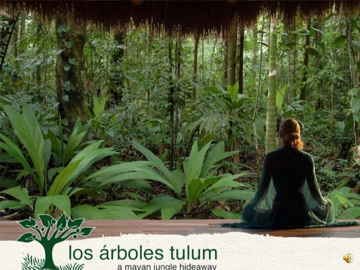 Los Arboles Tulum Introduction