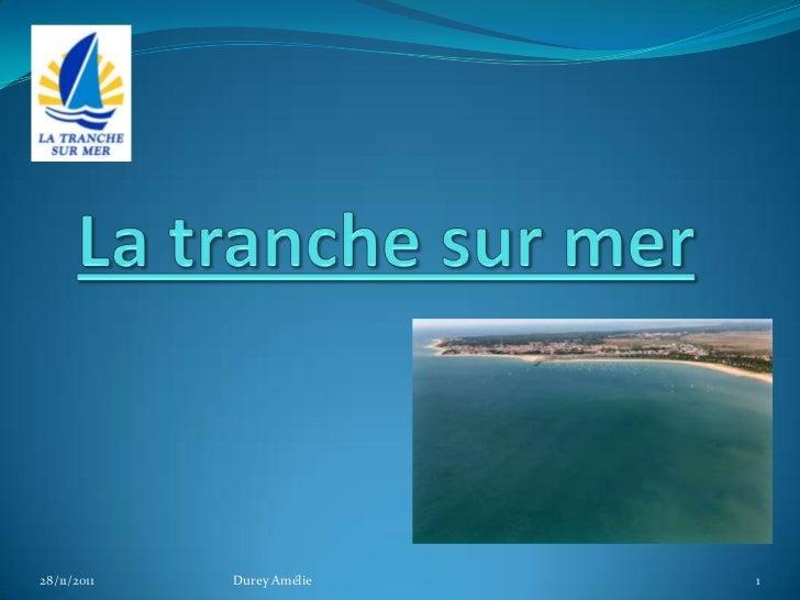 28/11/2011   Durey Amélie   1
