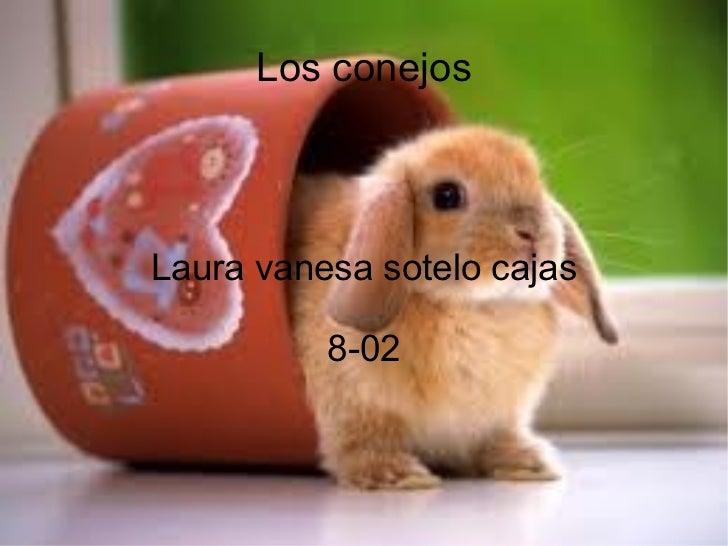 Los conejos Laura vanesa sotelo cajas 8-02
