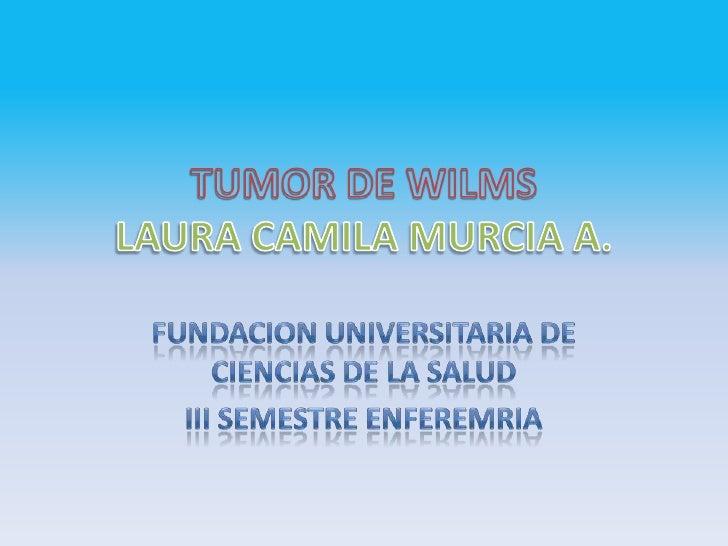 • 1-El tumor de wilms es                                             el tumor renal mas                                   ...
