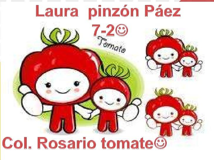 Los estudios que la ciencia ha realizado en estosúltimos tiempos sobre el tomate, han dejado almargen todos los prejuicios...