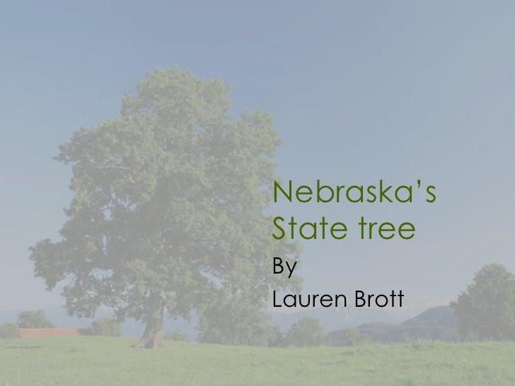 Nebraska'sState treeByLauren Brott