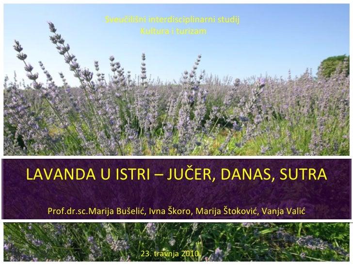 LAVANDA U ISTRI – JUČER, DANAS, SUTRA Prof.dr.sc.Marija Bušelić, Ivna Škoro, Marija Štoković, Vanja Valić Sveučilišni inte...